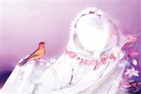 نگاهی به شخصیت و حقوق زن در اسلام و سایر ملل